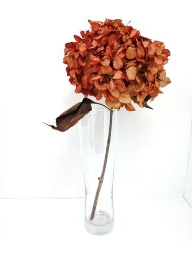 Kuru Çiçek Deposu Kırmızı Solmayan Tek Dal Ortanca Kırmızı